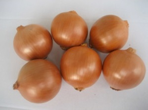 Seminte de ceapa galbena Ambrador F1 (250.000 seminte)