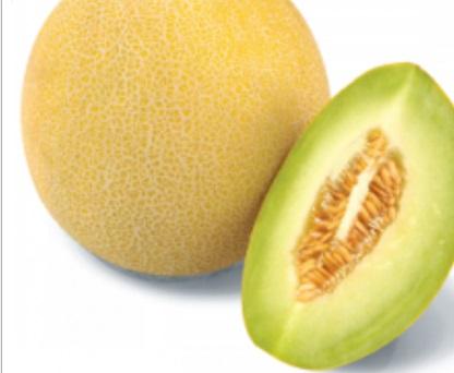 Seminte de pepene galben Tenor F1 (500 seminte)