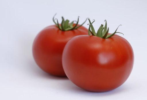 Seminte de rosii Cinto F1 (1000 seminte)
