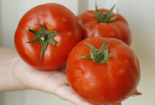 Seminte de rosii Umagna F1 (100 seminte)