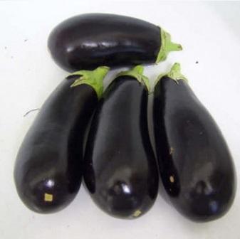 Seminte de vinete Black Enorma F1 (1.000 seminte)