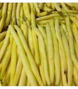 Seminte de fasole fideluta galbena Roquencourt ( sac 25 kg )