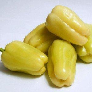 Seminte de ardei gras Bibic F1 ( 1000 seminte )