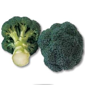 Seminte de broccoli Monaco F1 (2500 seminte)