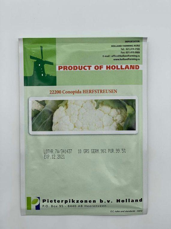 Seminte de conopida Herfstreusen (10 g)