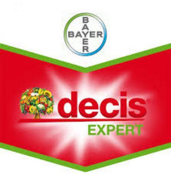 Decis Expert 100EC (1L)