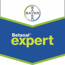 Erbicid Betanal Expert (5L)