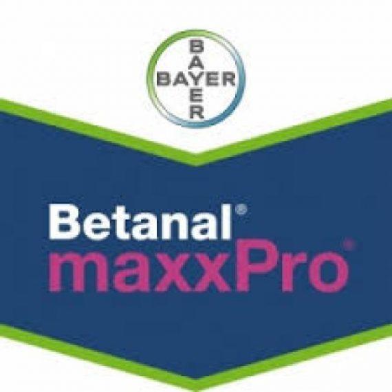 Erbicid Betanal MaxxPro OD (5L)