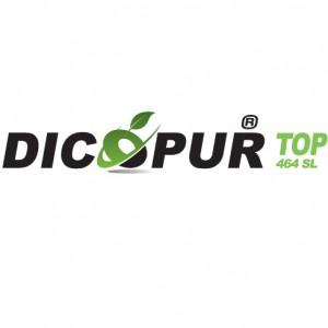 Erbicid Dicopur Top 464 SL(1L)
