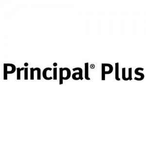 Erbicid Principal Plus (440gr)