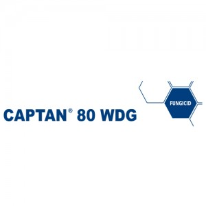 Fungicid Captan 80WDG (1Kg)
