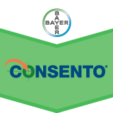 Fungicid Consento SC450 (1L)