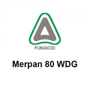 Fungicid Merpan 80 WDG (5kg)