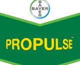 Fungicid Propulse 250 SE (5L)