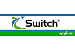 Fungicid Switch 62.5WG (10Kg)