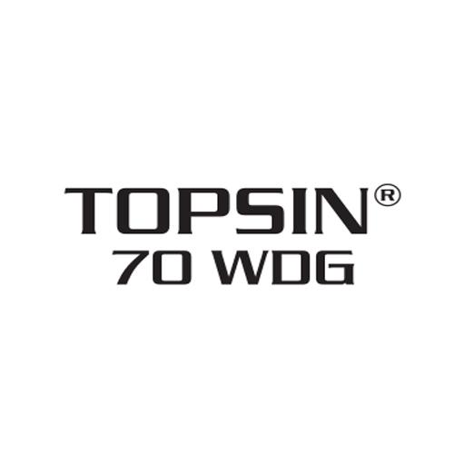 Fungicid Topsin 70WDG (20Kg)