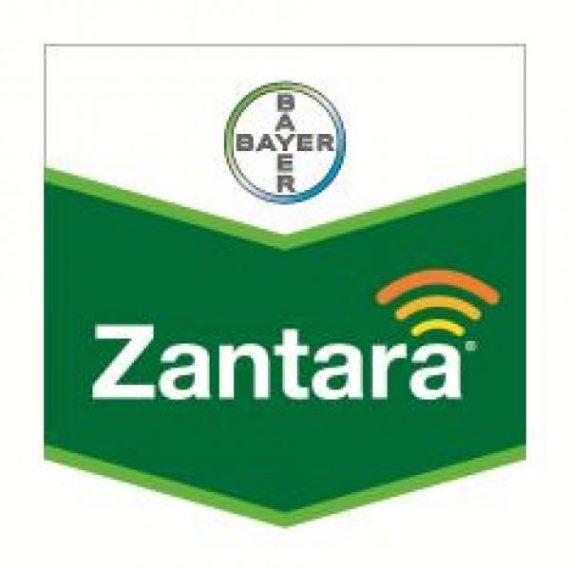 Fungicid Zantara 216 EC (5L)