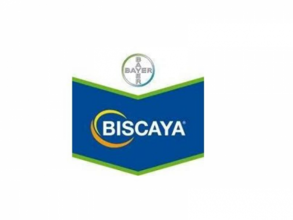Insecticid Biscaya 240 OD (1L)