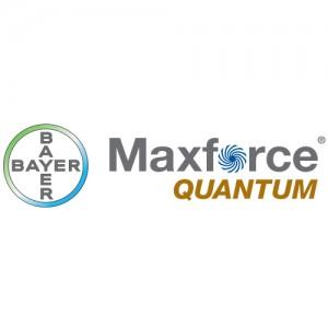Insecticid MaxForce Quantum ( 30 g )