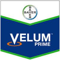 Nematocid  Velum Prime 400 SC (1L)
