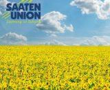 Seminte de floarea soarelui Supersol (150.000 seminte)