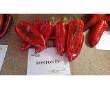Seminte de ardei kapia Tonton F1 (500 seminte)