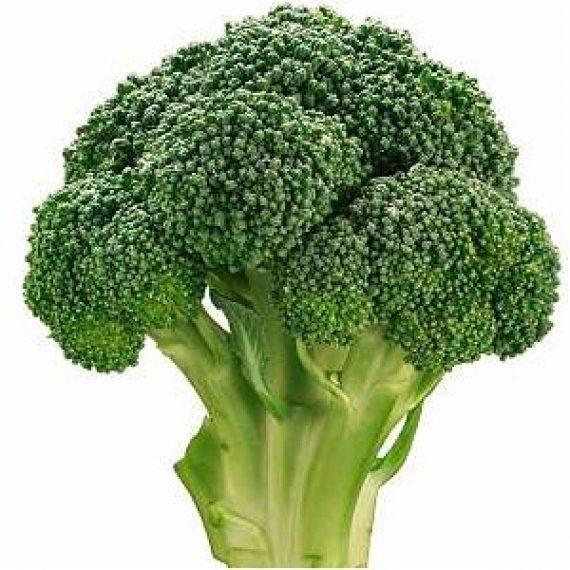 Seminte de broccoli Agassi F1 RZ (2500 seminte)