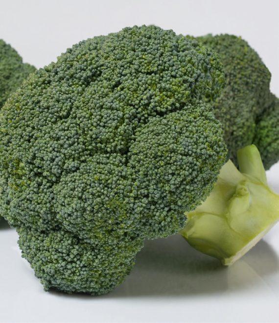 Seminte de broccoli Coronado F1 (1000 seminte)