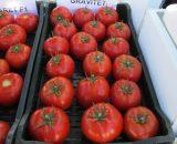 Seminte de rosii Gravitet F1 (500 seminte)