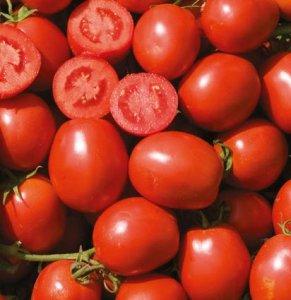Seminte de rosii Vulcan F1 (1000 seminte)