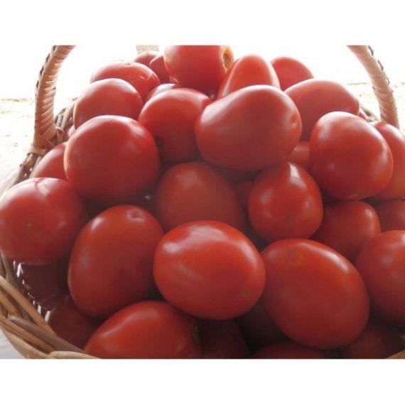 Seminte de rosii Chelse F1 (1000 seminte)