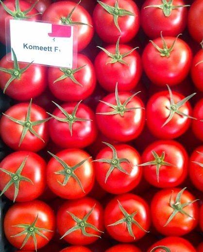 Seminte de rosii Komeett F1 (1000 seminte)