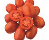 seminte tomate jag 8810 f1 160x130 - Seminte de castraveti SV 3506 CV F1 (250 seminte)