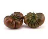 seminte de tomate bucanero f1 160x130 - Seminte Gusto Pink F1