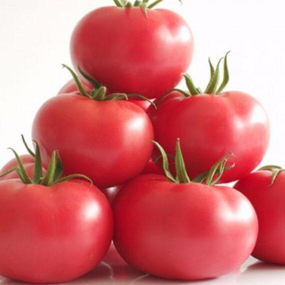 tomate manistella 570x570 - Seminte Manistella F1 (500 seminte)
