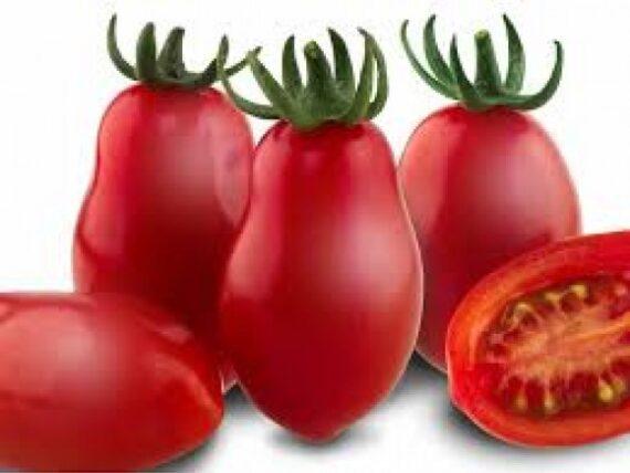 tomate mohitos 570x428 - Seminte Mojitos F1 ( 1000 seminte )