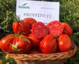 tomate profito 160x130 - Roundup Extra ( 20 L )