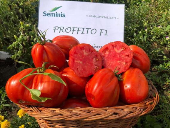 tomate profito 570x428 - Seminte Profitto F1 ( 100 seminte )