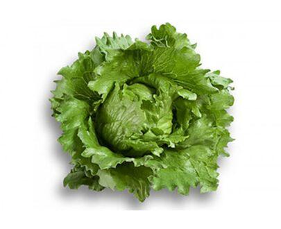 salata umbrinas 405x330 - Umbrinas ( 1000 seminte)