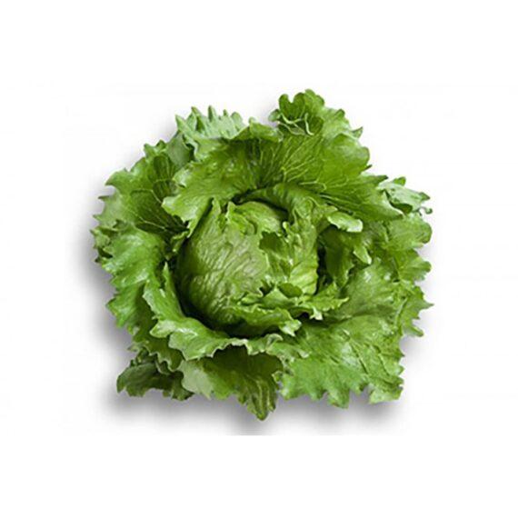 salata umbrinas 570x570 - Seminte Umbrinas ( 1000 seminte)
